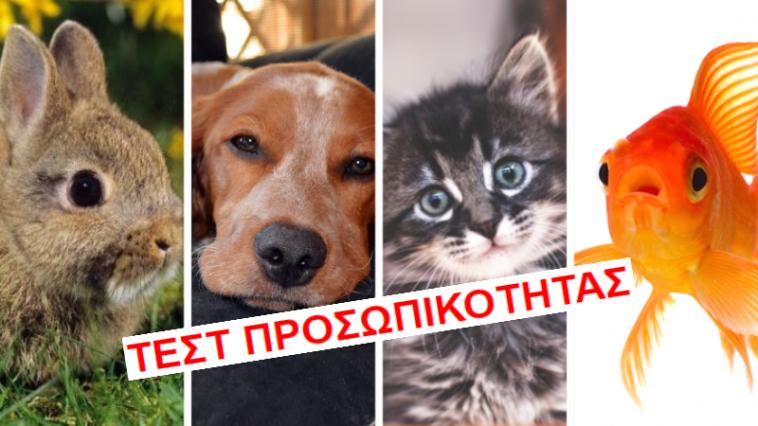 29fa0438bd09 Τεστ Προσωπικότητας  Ποιο κατοικίδιο ζώο είσαι  - Μικροπράγματα