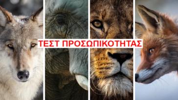 ΤΕΣΤ ΠΡΟΣΩΠΙΚΟΤΗΤΑΣ: Ποιο είναι το spirit animal σου;